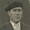 Navarro Pérez, Domingo